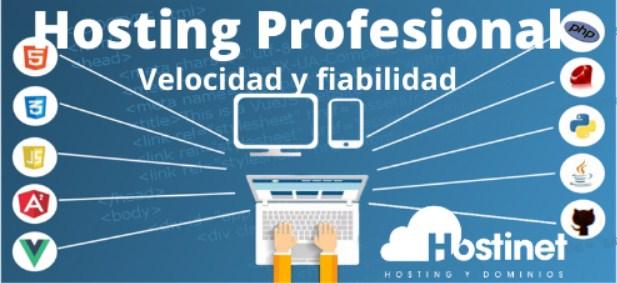 Este proveedor te ofrece la posibilidad de establecer un hosting profesional.