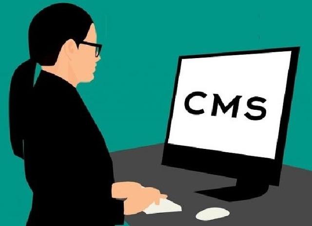 El hosting es donde se hará el hospedaje de toda la información que manejéis en vuestro CMS o gestor de contenidos