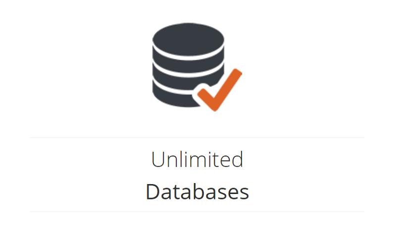 Las bases de datos de DigitalServer son muy importantes en todos los planes de alojamiento que te ofrecen los proveedores de servicios web