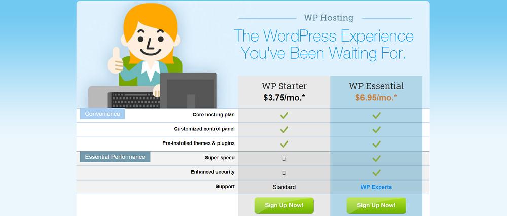 Es importantes saber qué proveedor de hosting elegir que se amolde a vuestras necesidades