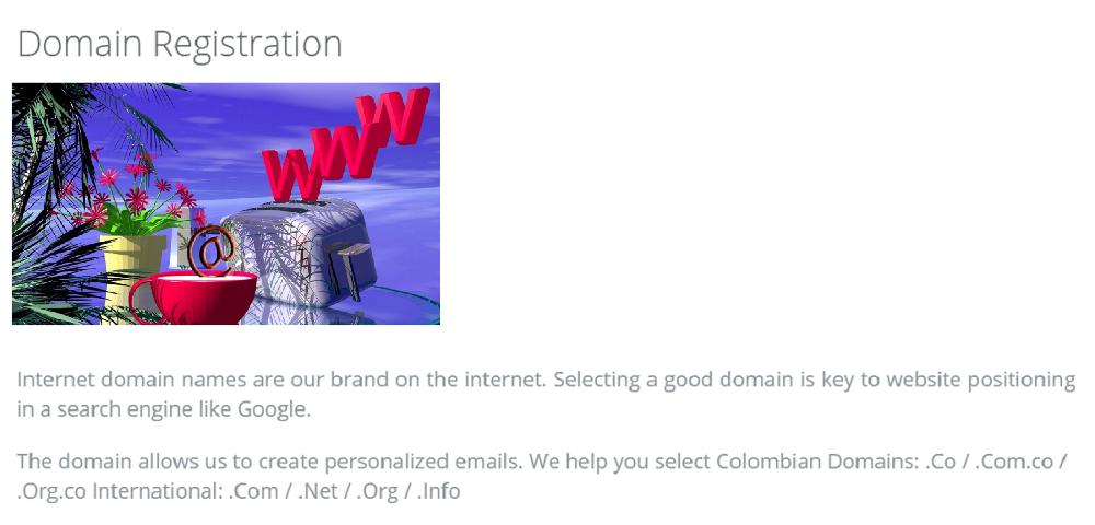 El nombre de tu dominio es importante porque mediante él, los usuarios accederán a tu sitio web