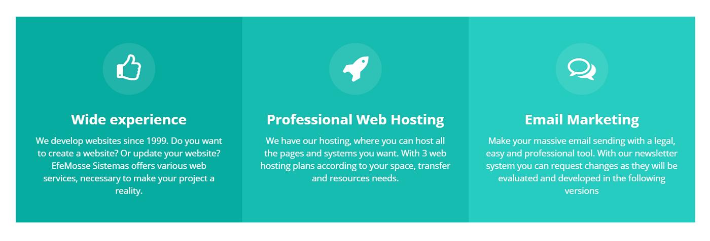 Efemosse Sistemas es un buen proveedor de alojamiento web para todo tipo de proyecto