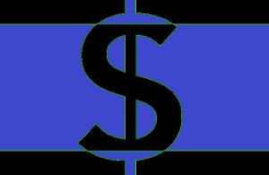 El servidor de alojamiento Hostname hosting, tiene precios muy baratos según opiniones, por lo que no sería un problema para su compra