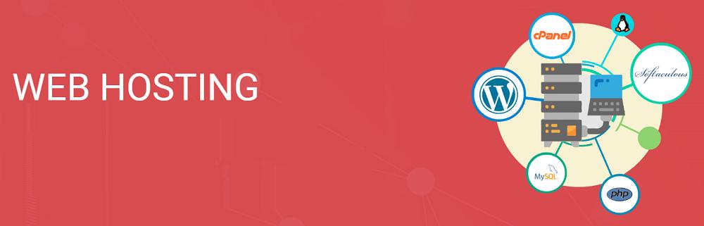 Maxi Server hosting ofrece una variedad de servicios para todos los usuarios debido opiniones afirman que son uno de los mejores