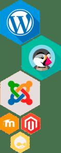 Entre las aplicaciones de Loading encontramos WordPress y demás CMS populares.