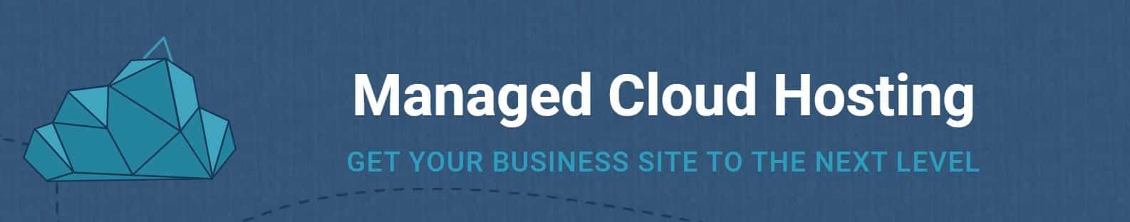 Existen los alojamiento manejados con CMS como Drupal o WordPress.