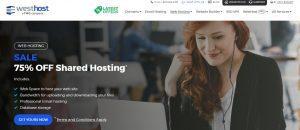 Los servicios que Ofrece el Hosting de Westhost te dejarán personalizar tu web al máximo.