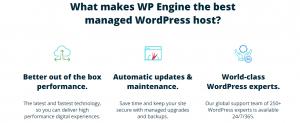 características de los mejores servicios de hosting web